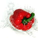 Capsicum paprika